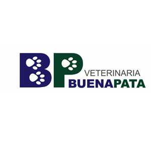 Veterinaria Buena Pata