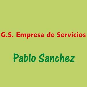 G.S.Empresa de Servicios