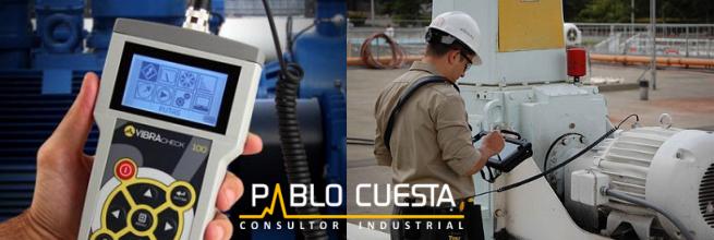 Pablo Cuesta Consultor Industrial